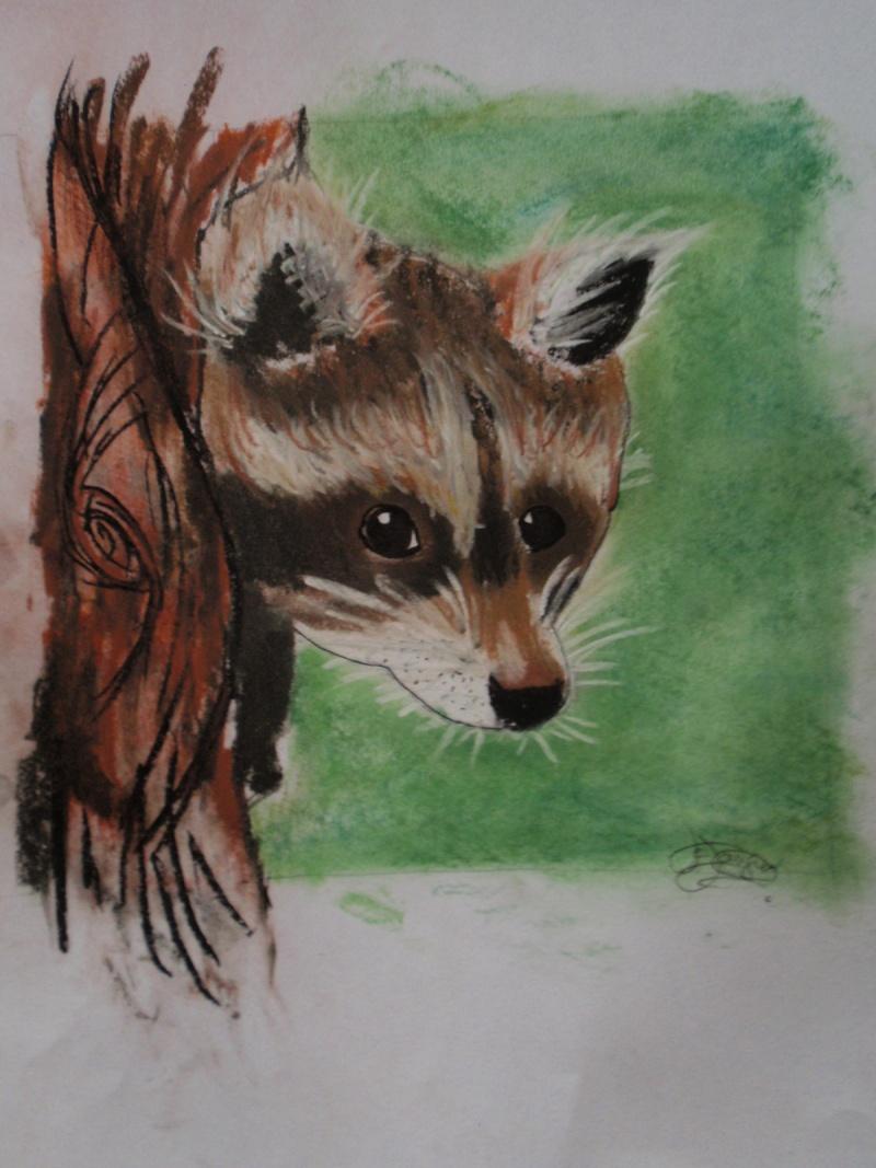 Crayons et feutres Pc220614