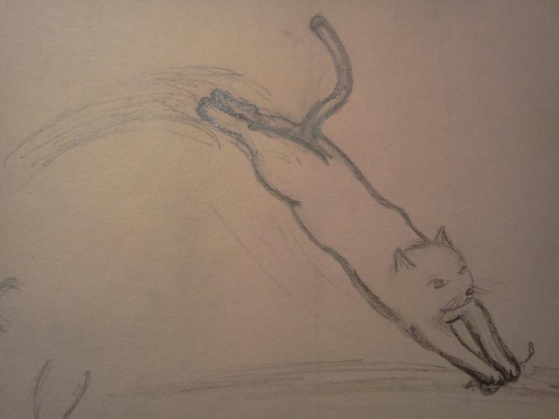 Experts en chats, venez à moi ! =) Img20111