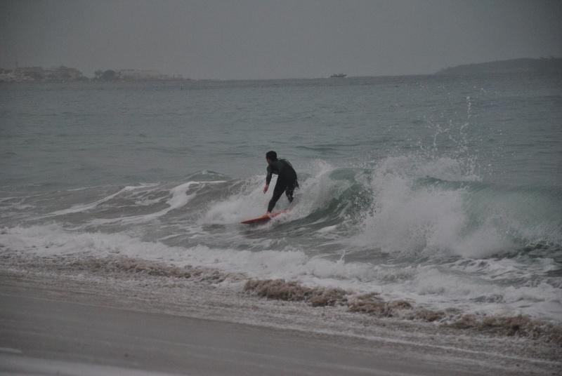 photos cannes 16/02/11 Dsc_0111