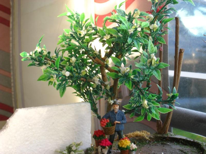 Eden fantaisie (1e essai fleuri) Img_8521