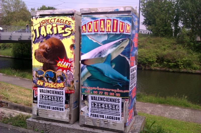 Un aquarium géant ambulant (otaries, requins) dans ma ville Imag1310