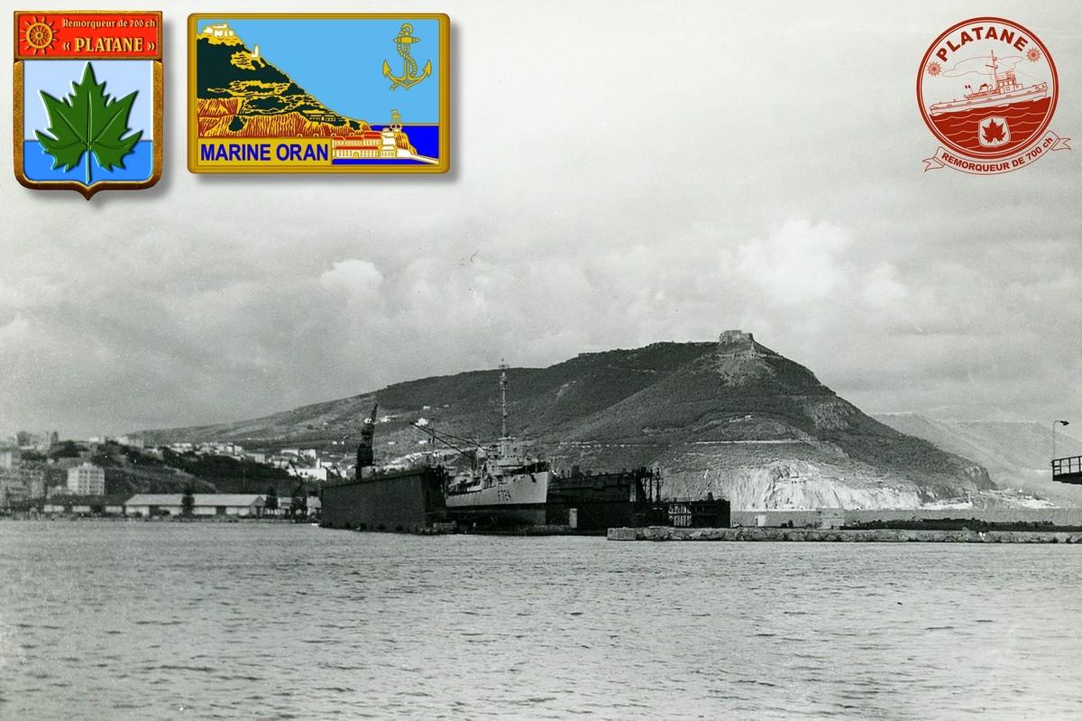 A propos du convoyage du dock de Mers el-Kébir à Papeete - Page 3 Platan22