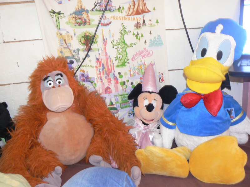 Achats brocante version Disney - Page 5 P1070117