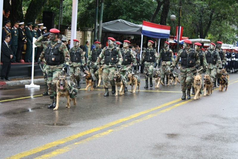 Armée paraguayenne _410