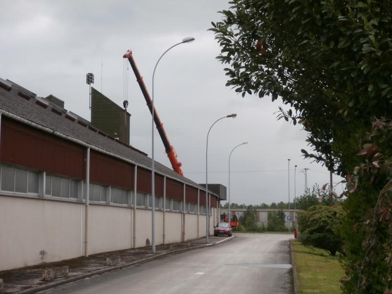Les grues de ADAM (France) P5230010