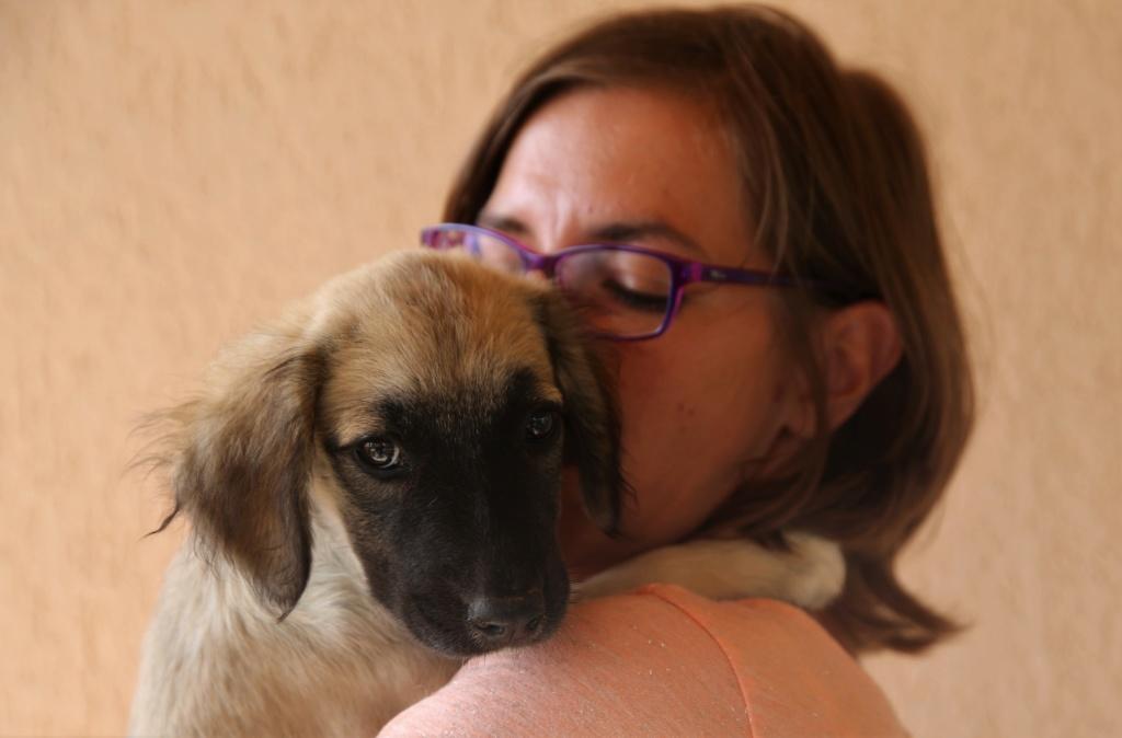 Ruby, petite chienne née en mai 2018 Hx9a8420