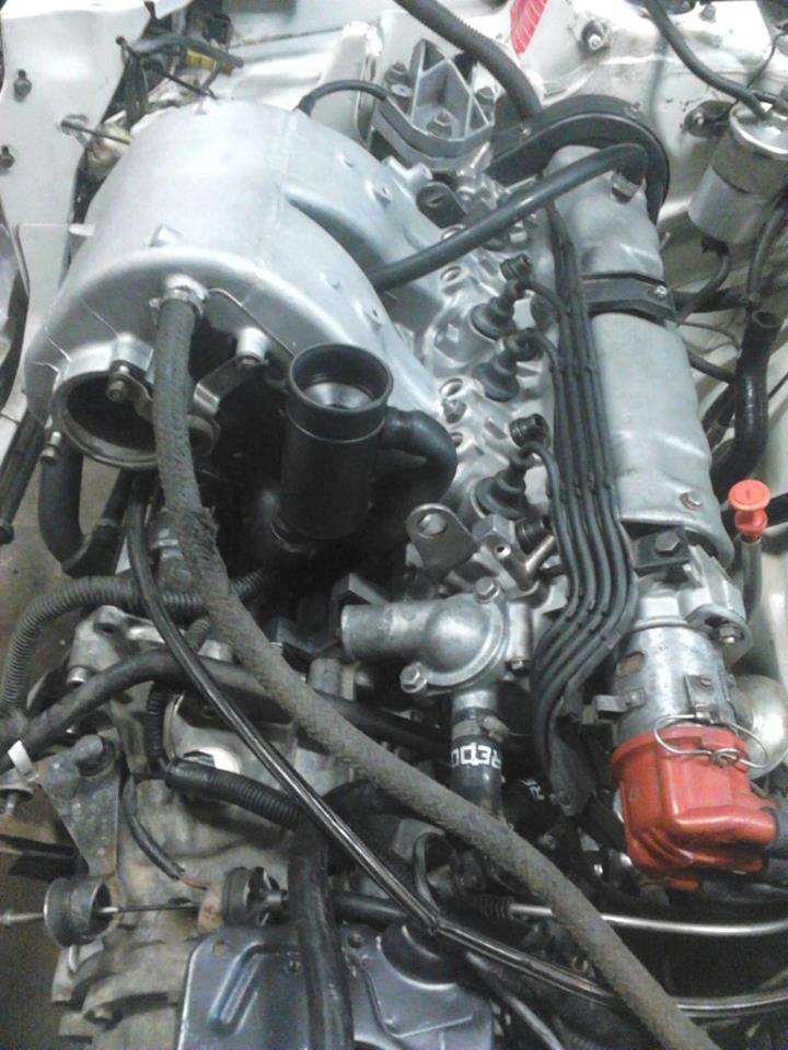 [ Mazoutix] 205 GTi 1.6 115cv blanc meije 1988 - Page 6 53785710