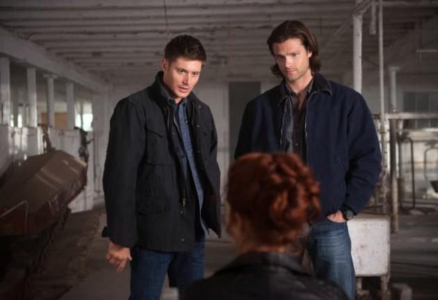 supernatural fans - Portail 53791010