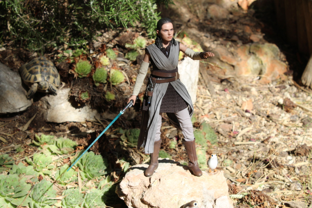 MMS???: Star Wars Ep 8 The Last Jedi  : Rey - Page 2 Img_3926
