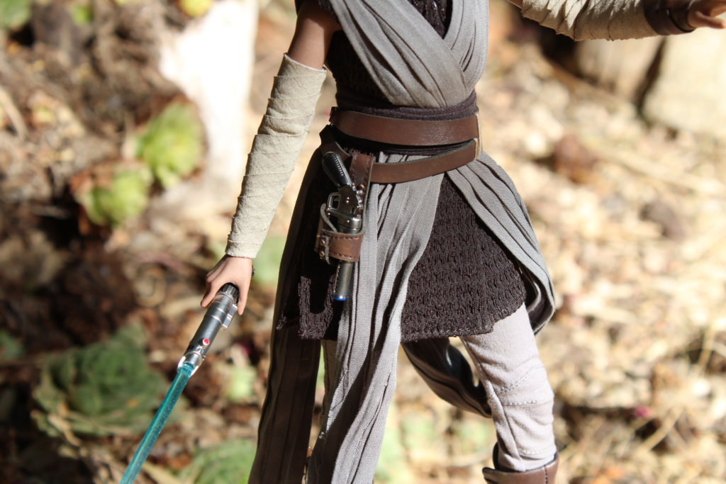 MMS???: Star Wars Ep 8 The Last Jedi  : Rey - Page 2 Img_3927