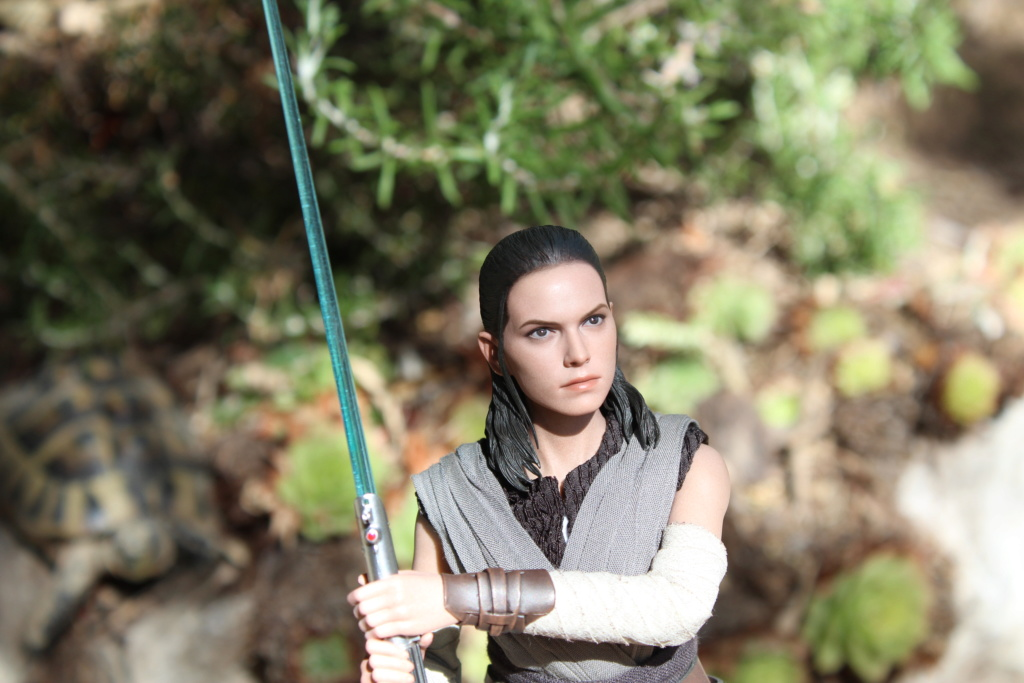 MMS???: Star Wars Ep 8 The Last Jedi  : Rey - Page 2 Img_3928
