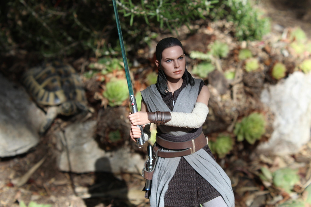 MMS???: Star Wars Ep 8 The Last Jedi  : Rey - Page 2 Img_3929