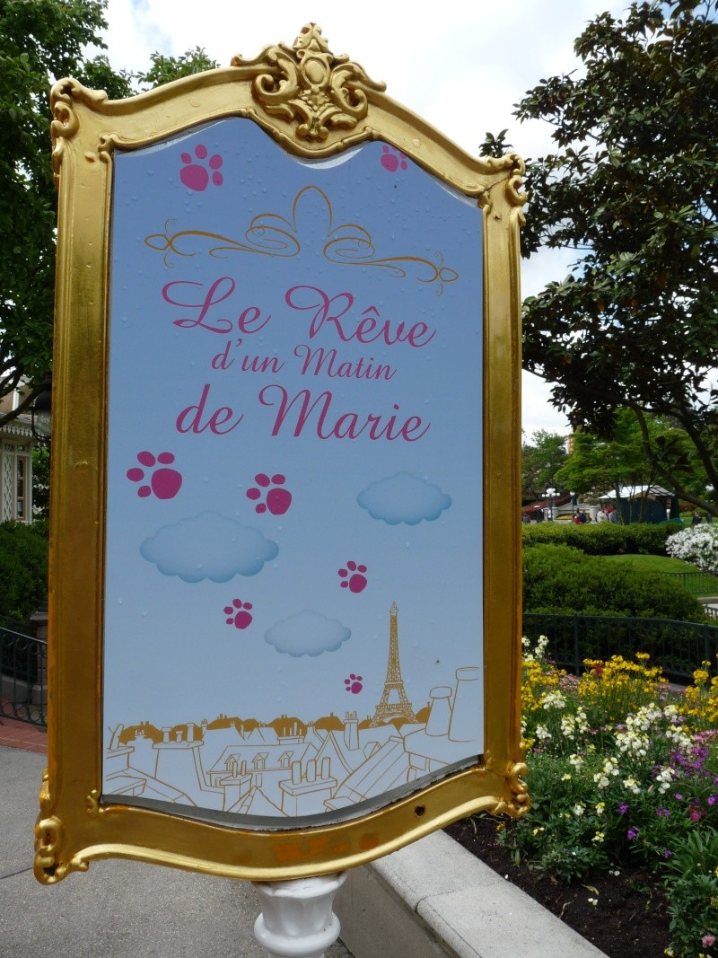 dreamers everywhere - Disney Dreamers Everywhere ! Évènement Spécial! Trois jours de rêve et de magie ! P1340410