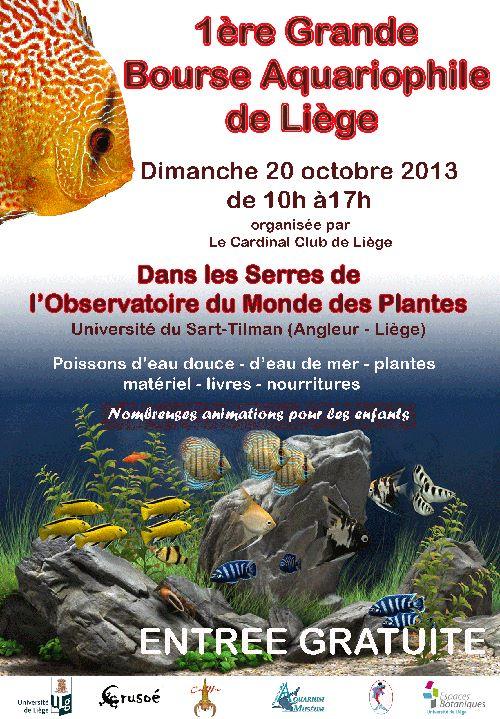 Recherche vendeur pour la bourse d'aquariophile de Liège 26026510