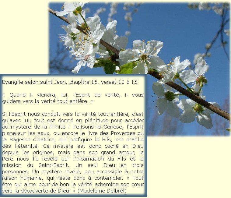 """Dimanche 26 Mai """" Sainte Trinité Solennité du Seigneur """" Dimanc11"""