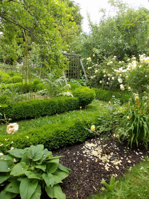 le jardin des rosiers (86) Dscn8447