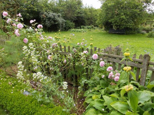 le jardin des rosiers (86) Dscn8450