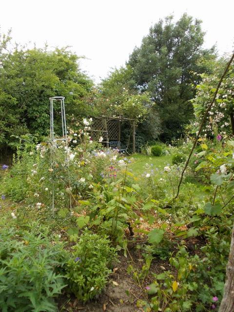 le jardin des rosiers (86) Dscn8455