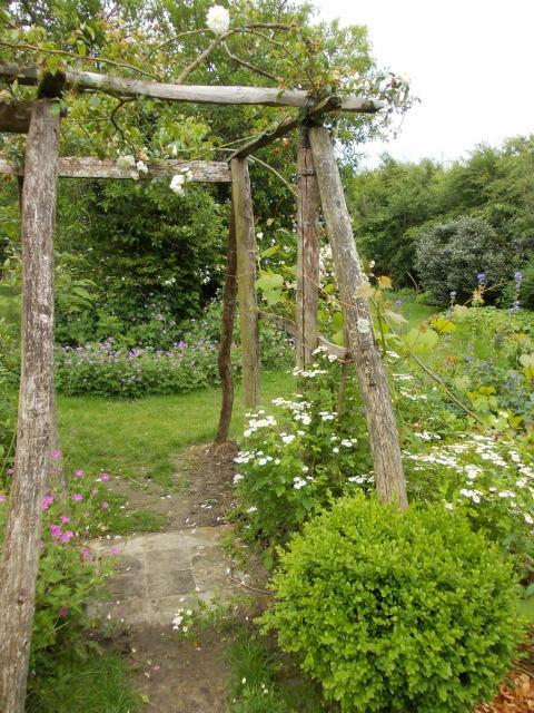le jardin des rosiers (86) Dscn8456