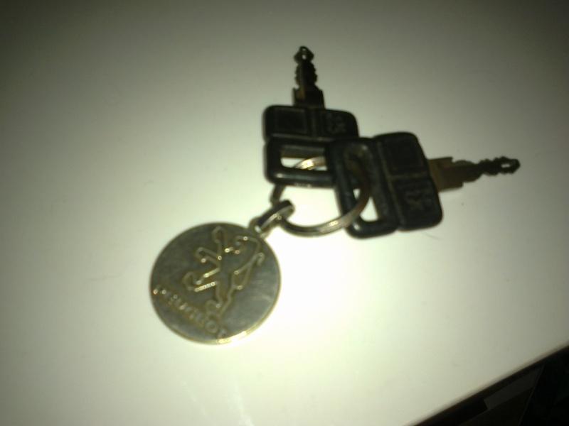 Le trousseau de clef de votre GTI - Page 2 Photo514