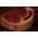 Habitat Chèvre Espagnole => Viande de Chèvre Roastc10