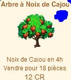 L'Arbre à Noix de Cajou => Noix de Cajou Sans_447