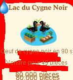 Lac du Cygne Noir Sans_669
