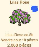 Lilas Rose => Lilas Rose Sans_t34