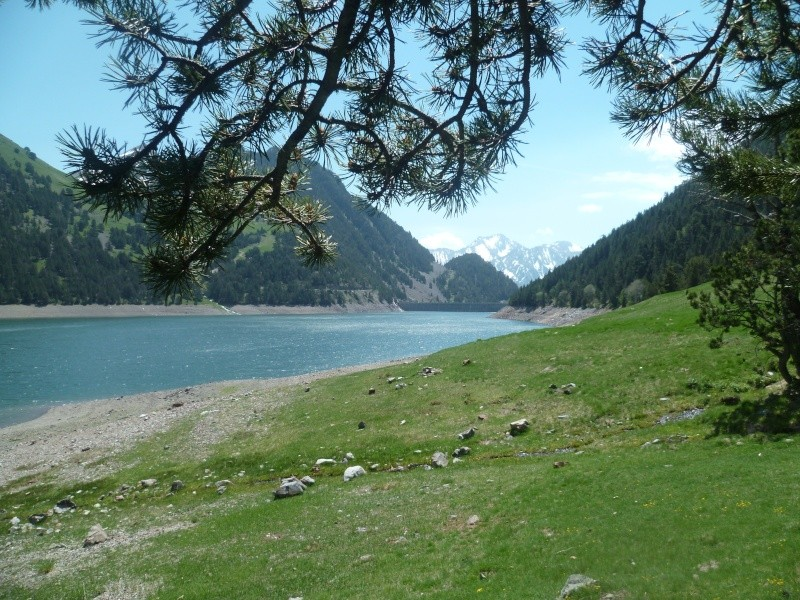 Lac de l'Oule P1020019