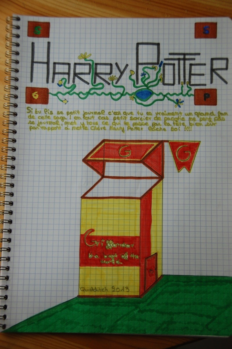 Vos Fanarts Harry Potter - Page 3 Dsc_7318