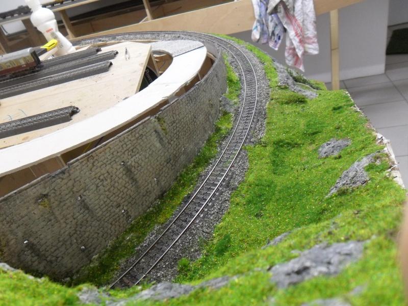 mon projet de gare terminus belge - Page 13 Sam_0914