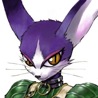 Character's (Dilrax) Miafac10