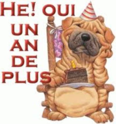 joyeux anniversaire guillemau capcoeurdemiel Images11