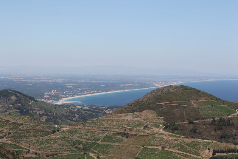 Banyuls sur Mer (66) 624a4950