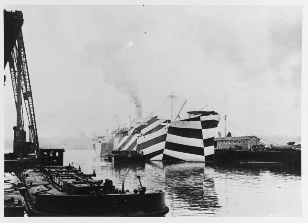 Mesures réglementires de camouflages US Navy 1939 - 1945 2_38-310