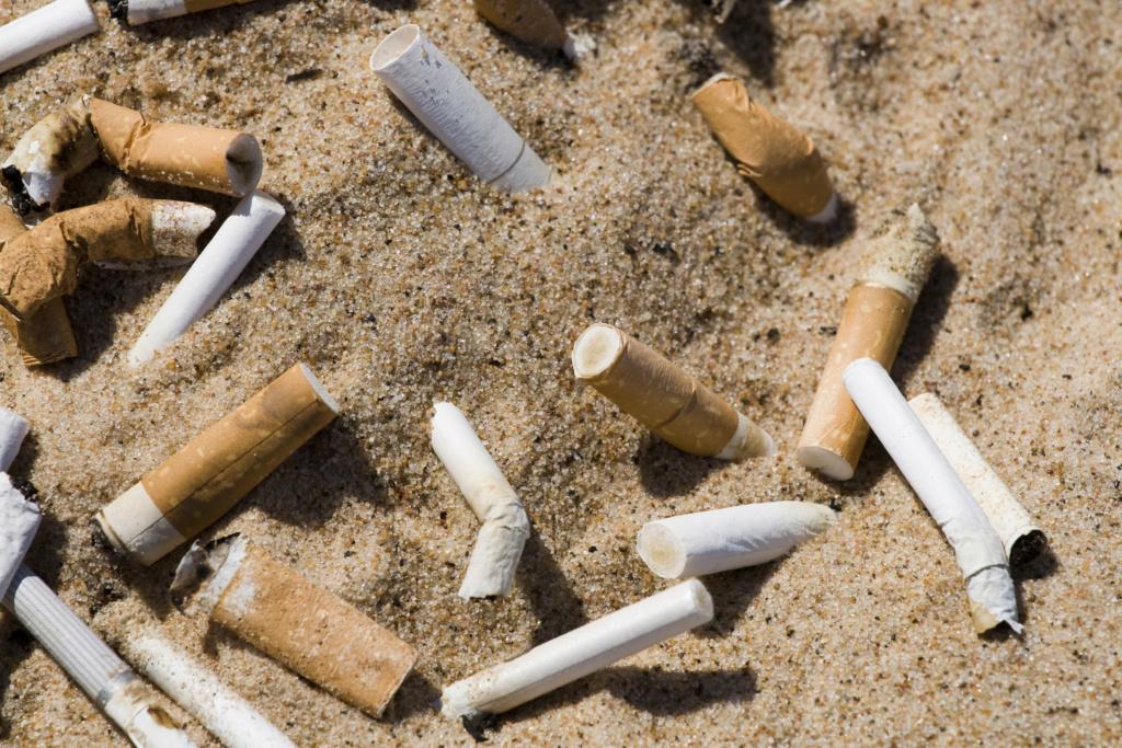 La pollution plastique des mers et des océans !!! 93467510