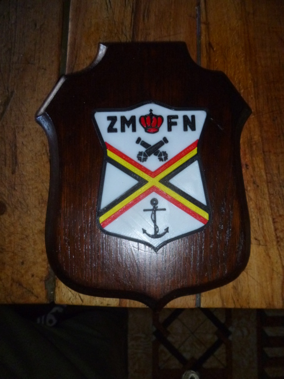 Logo ZM-FN - Page 4 P1100810