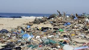 La pollution plastique des mers et des océans !!! Sans-t19