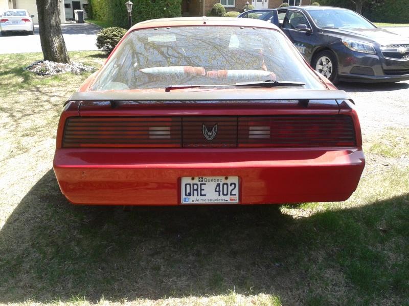 firebird 1984  20130527
