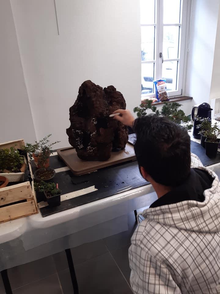 la passion du bonsai - Page 32 75650510
