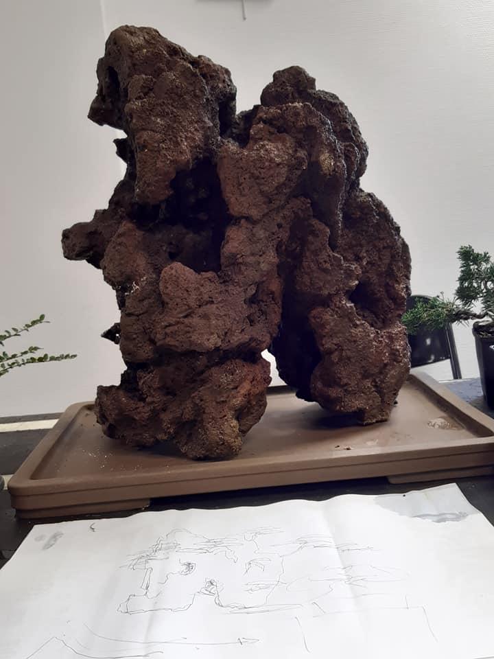 la passion du bonsai - Page 32 76963310
