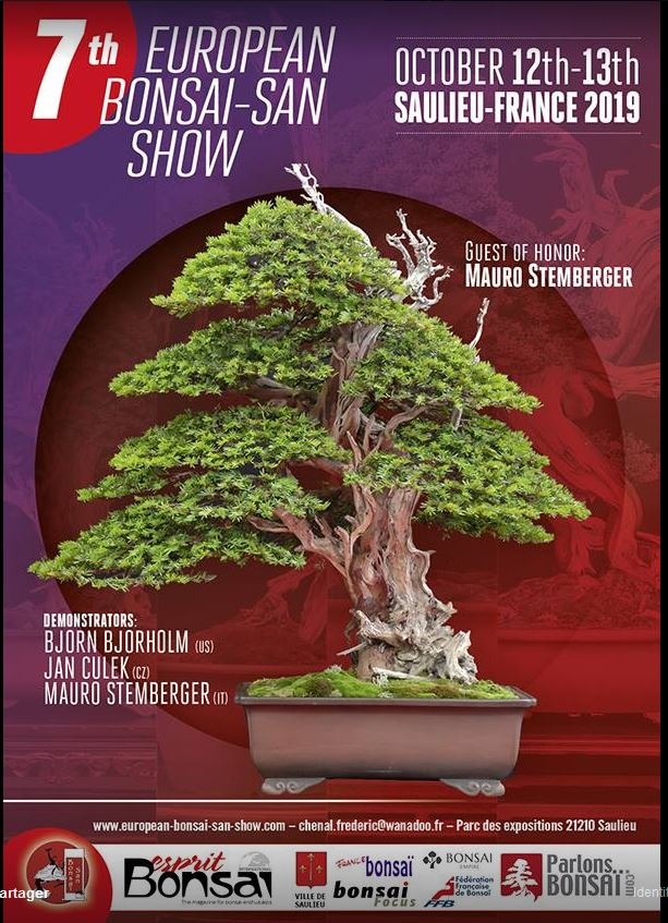 la passion du bonsai - Page 29 Captur12