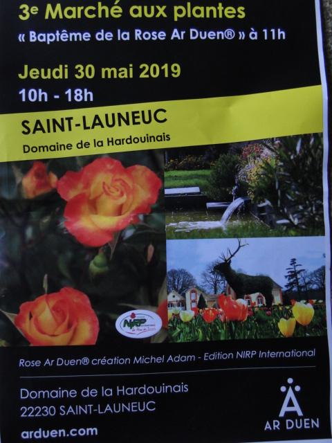 3e marcher au plante de st Launeuc (22) Dsc00697