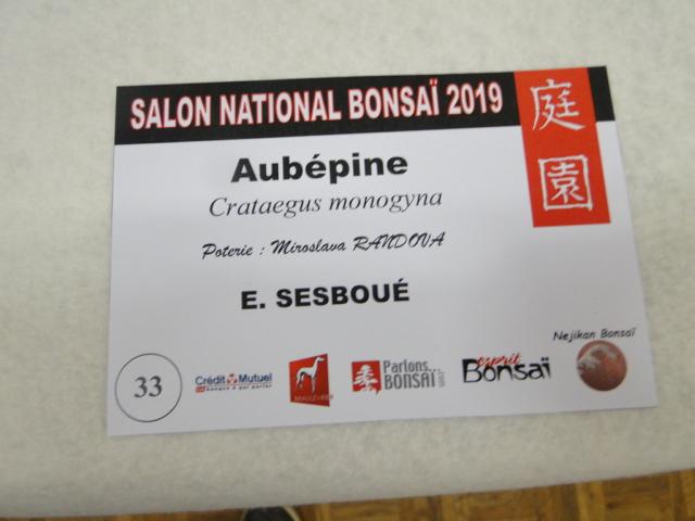 expo maulévrier 2019 - Page 2 Dsc08139