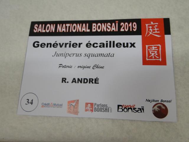expo maulévrier 2019 - Page 2 Dsc08143