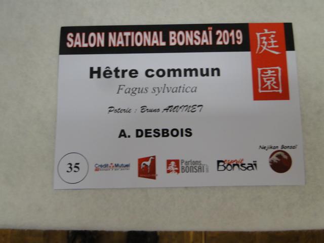 expo maulévrier 2019 - Page 2 Dsc08146