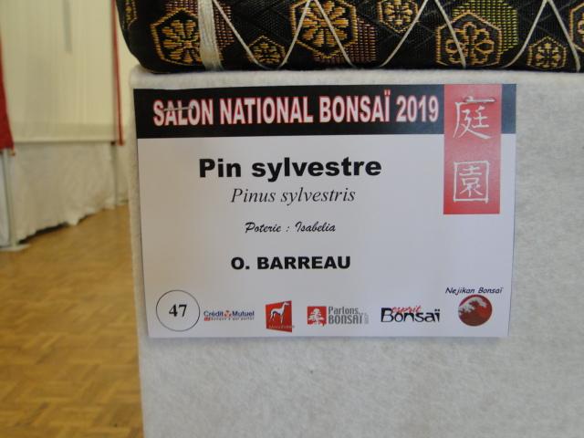 expo maulévrier 2019 - Page 3 Dsc08154