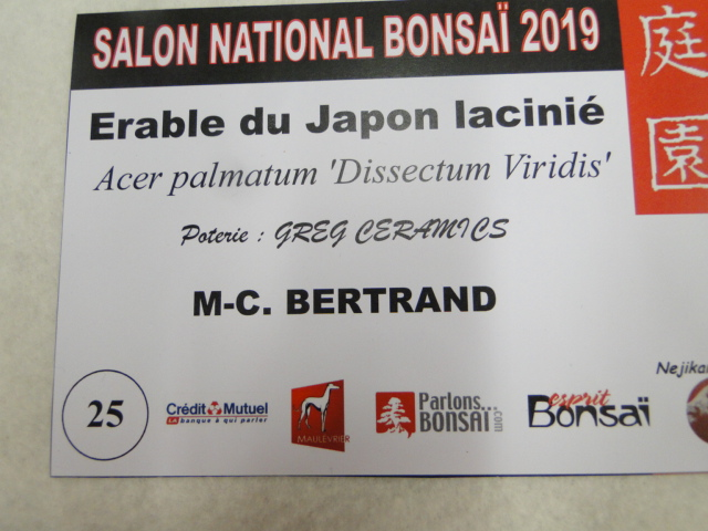 expo maulévrier 2019 - Page 3 Dsc08170