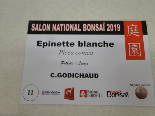 expo maulévrier 2019 - Page 5 Dsc08231
