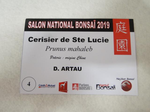 expo maulévrier 2019 - Page 6 Dsc08251